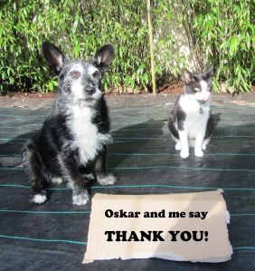 Thank you from me and Oskar!